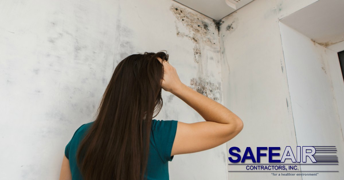 Why Ohio Black Mold Removal is Crucial to Your Health
