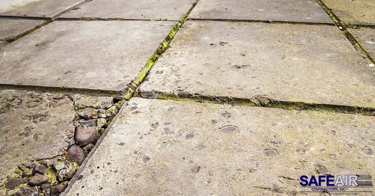asbestos floor removal