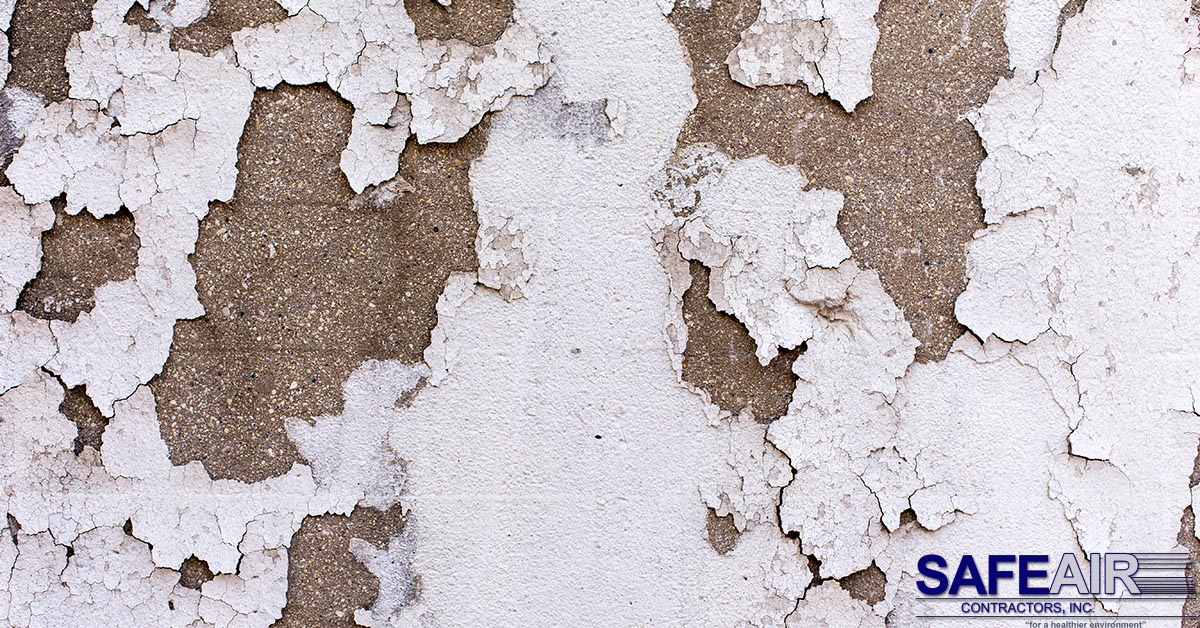 Lead Paint Test: How to Determine if Your Home is Contaminated by Lead